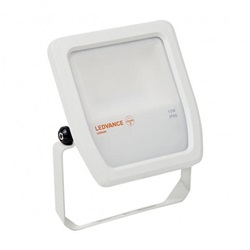FLOOD LED 50W/4000K WT 100DEG IP65