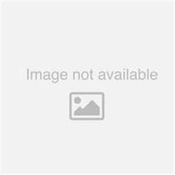 PANNELLO LUM 1847 LED 31W 4K CELLDD