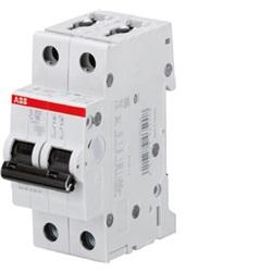 interruttore magnetotermico 10kA Curva C 2A