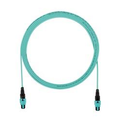 OM3 12-FIBER, PANMPO INTERCONNECT C