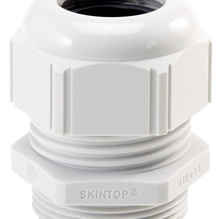 SKINTOP  ST-M 20X1,5 RAL 7001 SGY